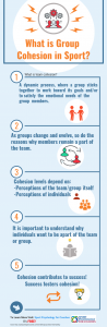 This infographic describes what group cohesion in sport is and its importance.